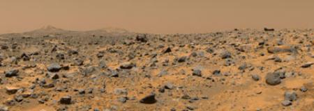 Lichen on Mars