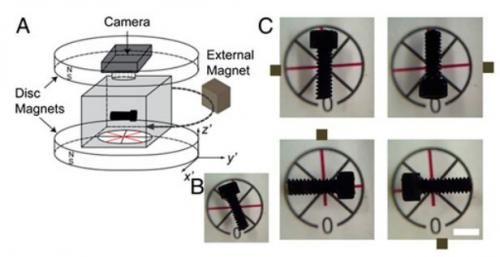 Researchers devise several ways to orient nonmagnetic objects in 3D space using magnetic levitation