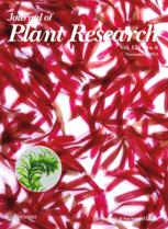Microalgae and aquatic plants can help to decrease radiopollution in the Fukushima area