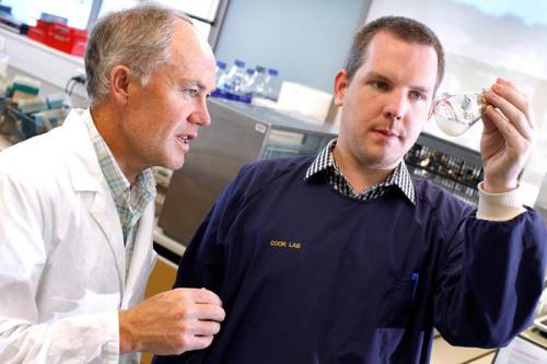 Mycobacteria metabolism discovery may pave way for new TB drugs