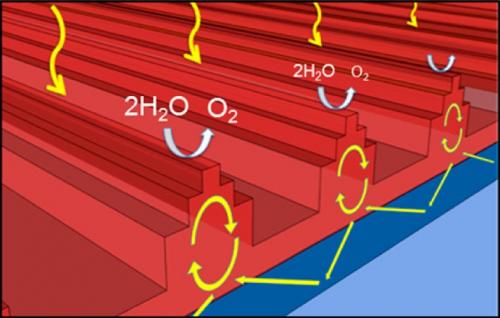 Nanostructures enhance light trapping for solar fuel generation