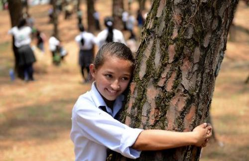 Nepalese school children hug trees in a bid as they celebrate World Environment Day in the forest of Gokarna village, on the out