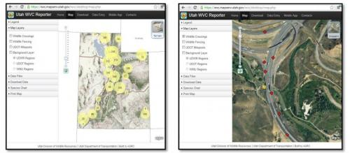 New app collects wildlife-vehicle collision data