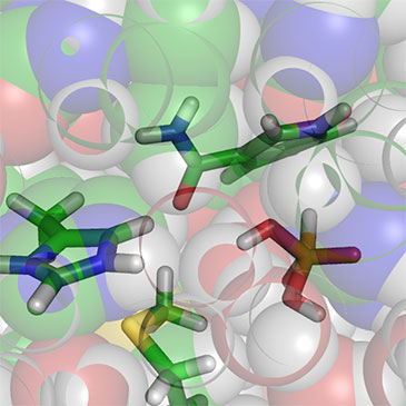 New research reveals role of methionine in enzyme catalysis