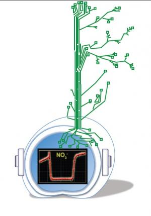 Nitrogen-tracking tools for better crops and less pollution