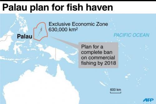 Palau plan for fish haven