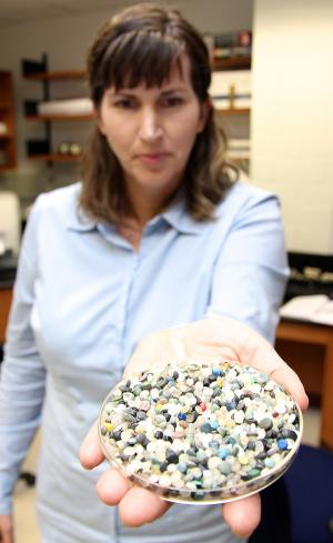 Polyethylene and polypropylene beads threaten shoreline ecosystems