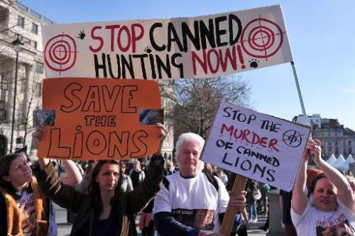 Protesters take part in a march against canned hunting of lions in central London on March 15, 2014