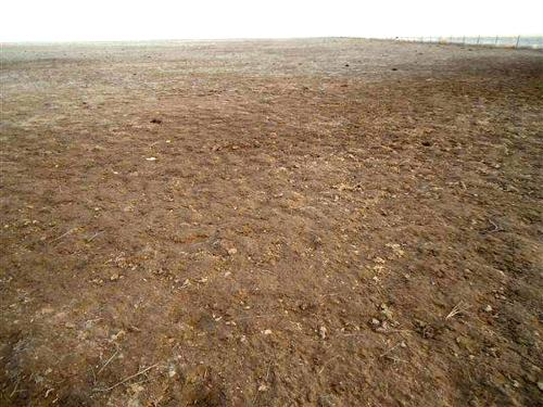 Rangeland management is key to surviving drought