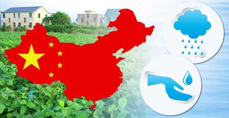 Reorganization of crop production and trade could save China's water supply
