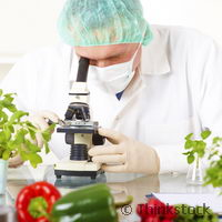 Research offers 'promise' of improved food safety