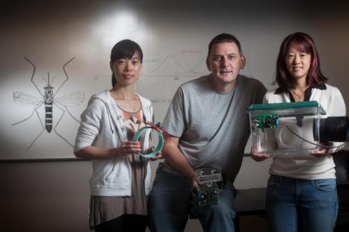 Saving crops and people with bug sensors