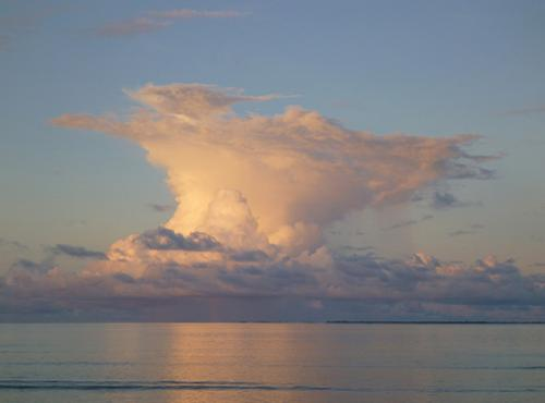 Scientists to examine Pacific's 'global chimney'