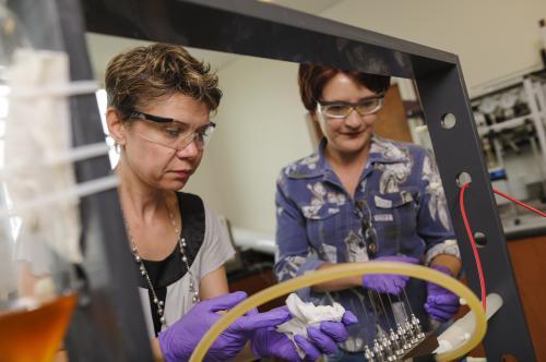 Shrimp, 30,000 Volts Help UA Start-up Land $1.5 Million for Uranium Extraction