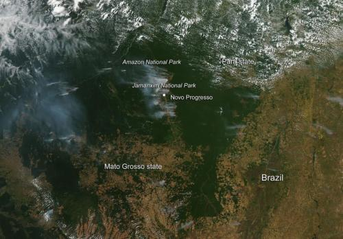Signs of deforestation in Brazil