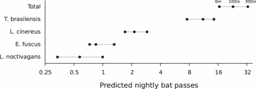 Study confirms highways are bad news for several bat species
