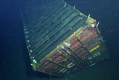 Study describes deep-sea animal communities on and around a sunken shipping container
