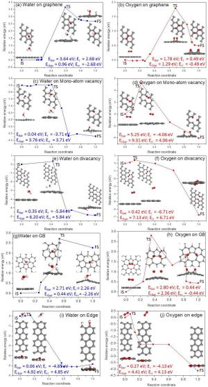 The reaction pathways for the dissociative adsorption of an H2O and an O2 molecule on graphene