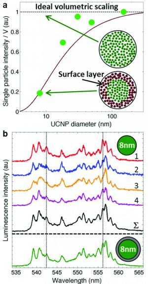 UCNP size-dependent luminescence intensity and heterogeneity
