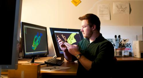 Undergrad researcher unearths dino discovery