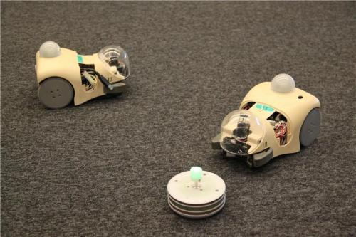 Using robots to study evolution
