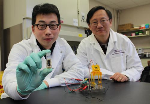 Virginia Tech researcher develops energy-dense sugar battery
