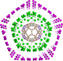 Virus structure inspires novel understanding of onion-like carbon nanoparticles