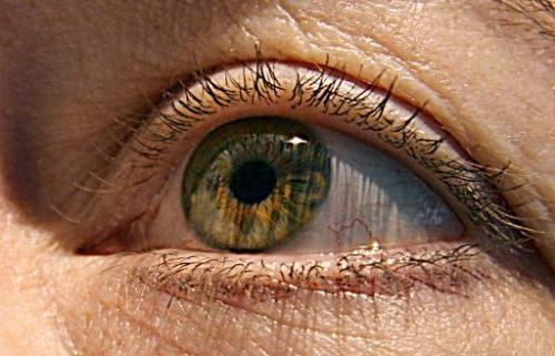 "Voxx International wants iris recognition technology to render passwords obsolete, offering a ""one in two trillion"" le"