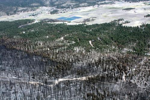 Wallow Fire study suggests there may be multiple paths to fuel reduction in the WUI