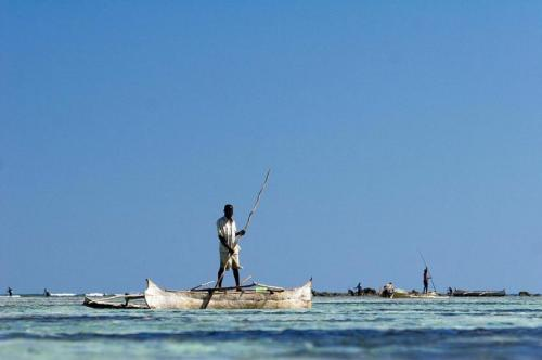 Western Indian Ocean communities play vital role in conservation
