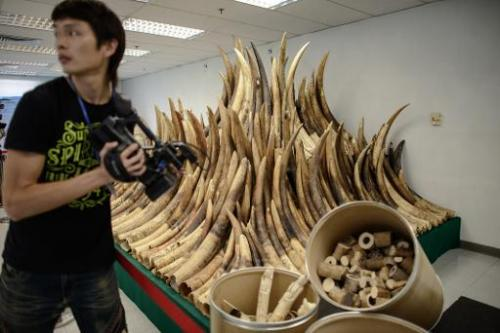 China bans ivory carving imports for one year