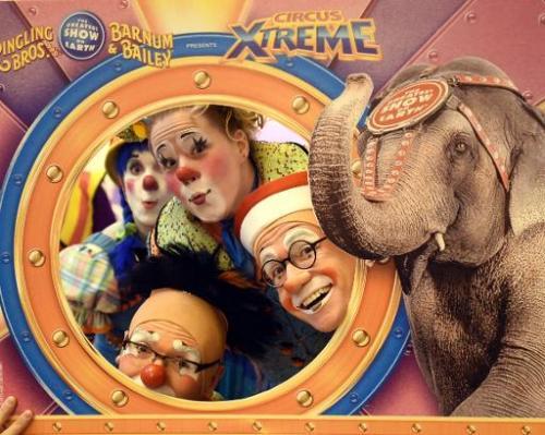 Ringling elephants say goodbye to the circus