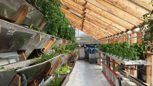 How Sustainable Is Vertical Farming