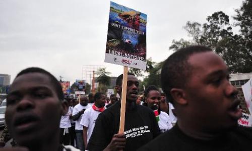 Ivory mafia: how criminal gangs are killing Africa's elephants