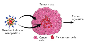 Nano packages for anti-cancer drug delivery