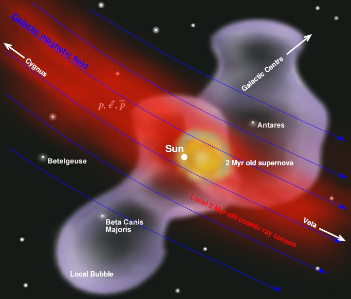 This illustration of the region surrounding our Solar System shows the estimated location of the two-million-year-old supernova, lying close to the galactic magnetic field, that may have been the source for some high-energy cosmic rays observed today. Credit: Michael Kachelrieß, Norwegian University of Science and Technology (NTNU)  Read more at: http://phys.org/news/2015-11-cosmic-rays-two-million-year-old-supernova.html#jCp