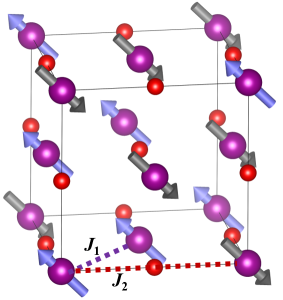 Revealing the nature of magnetic interactions in manganese oxide
