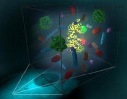 New technique allows study of protein folding, dynamics in living cells