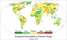 Climate change linked to major vegetation shifts worldwide