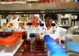 Gene discovery potential key to cost-competitive cellulosic ethanol