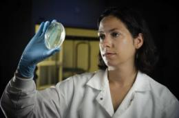 Virginia Tech engineer identifies new concerns for antibiotic resistance, pollution
