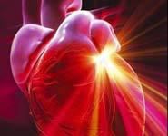 New research could help in the treatment of cardiovascular disease