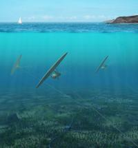 Deep Green underwater kite to generate electricity