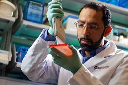 Researchers shine light on how some melanoma tumors evade drug treatment