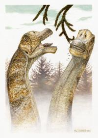 New dinosaur discovered head first, for a change