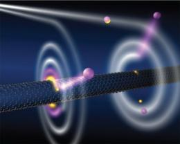 Black-hole like effect in nanotube and the possibility of new matter states