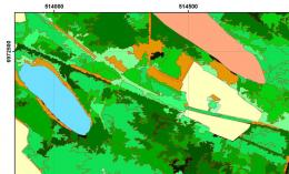 Novel services for tropical forest monitoring with satellite