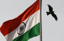 A Black Kite flies over in New Delhi