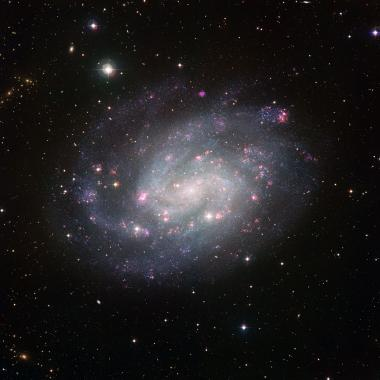 A nearby galactic exemplar