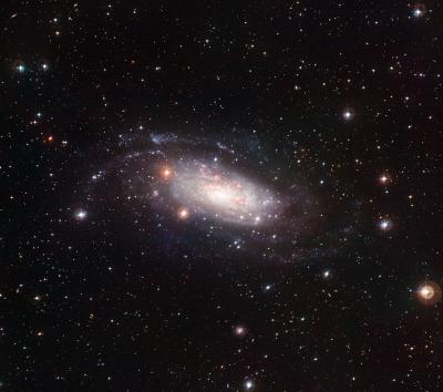 A picture-perfect pure-disc galaxy